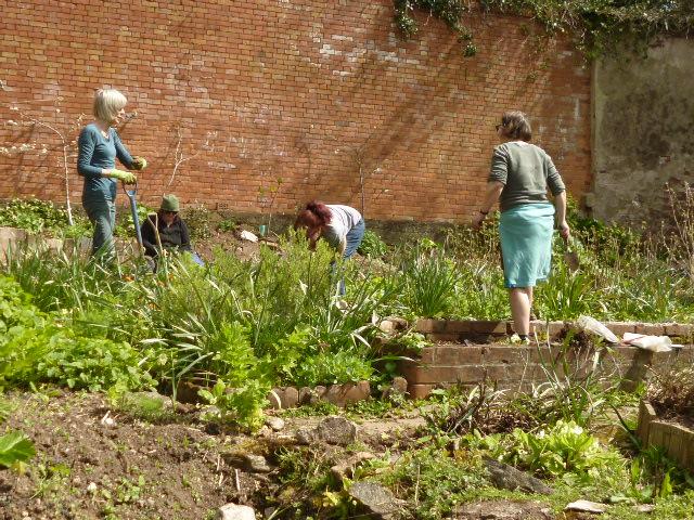 Veg planting 2 (2)